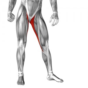 Groin Pain Your Adductors Are Tight